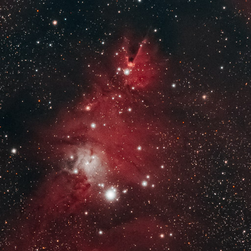 NGC 2264 - Christmas Tree Cluster and Cone Nebula