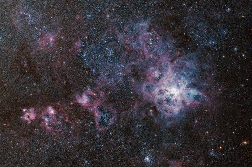 NGC 2070 - Tarantula Nebula (DSS v1)