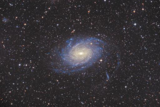NGC 6744 - Spiral Galaxy in Pavo (DSS v1)