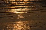 DE, DE-SH, NF, SH, color, colors, deutschland, ebbe, farbe, farben, foreshore, frühling, germany, golden, goldfarben, gröde, hallig, hallig gröde, halligen, holm, jahreszeit, jahreszeiten, low tide, meer, mudflat, niedrigwasser, nordfriesland, nordsee, north frisia, north sea, reflections, reflektionen, reise, schleswig-holstein, sea, seascape, season, seasons, see, spring, tidal flat, travel, wadden, wasser, water, watt, world