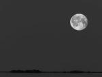 DE, DE-SH, NF, SH, astrofotografie, astronomie, astronomy, astrophotography, b&w, black and white, bw, deutschland, foreshore, fotografie, frühling, germany, groede2007, gröde, hallig, hallig gröde, hallig hooge, halligen, himmel, holm, hooge, jahreszeit, jahreszeiten, landscape, landschaft, meer, mond, monduntergang, moon, moonset, nordfriesland, nordsee, north frisia, north sea, photography, reise, schleswig-holstein, schwarzweiß, sea, seascape, season, seasons, see, sky, solar system, sonnensystem, spring, sw, travel, wadden, wasser, water, watt, world