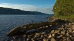 GB, SCO, SCT, UK, blau, blue, clouds, color, colors, dinge, farbe, farben, favs-sb, great britain, green, grün, highland, himmel, inverness-shire, jahreszeit, jahreszeiten, landscape, landschaft, loch, loch ness, log, reise, schottland, scotland, scotland2007, season, seasons, shore, sky, sommer, steine, stones, summer, things, travel, united kingdom, wasser, water, week1-brodie, wolken, world