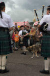GB, SCO, SCT, UK, animal, animals, bagpipe, canidae, dog, dogs, dudelsack, dudelsackkapelle, favs-mj, folklore, freizeit, fun fair, great britain, hafen, harbor, harbour, highland, highland dress, hund, hunde, instrument, instrumente, instruments, jahreszeit, jahreszeiten, jugenddudelsackkapelle, junior pipe band, kilt, leisure, leute, maritime, menschen, music, musician, musicians, musik, musiker, people, pier, pipe band, recreation, reise, ross and cromarty, rural, schottische folklore, schottland, scotland, scotland2007, scottish folklore, season, seasons, sommer, summer, tier, tiere, tourist, touristen, tourists, travel, ullapool, ullapool pier, united kingdom, volkstum, week2-stoer, wester ross, world