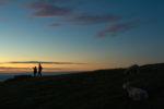 GB, SCO, SCT, UK, animal, animals, assynt, blaue stunde, blue hour, buildings, cliffs, clouds, coast, favs-sb, gebäude, great britain, highland, himmel, jahreszeit, jahreszeiten, klippen, küste, landscape, landschaft, leuchtturm, leute, licht, light, lighthouse, meer, menschen, nacht, night, people, raffin, reise, schaf, schafe, schottland, scotland, scotland2007, sea, seascape, season, seasons, see, sheep, shore, sky, sommer, sonne, sonnenuntergang, stoer, stoer head lighthouse, summer, sun, sunset, sutherland, tier, tiere, travel, ufer, united kingdom, wasser, water, wolken, world