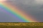 DE, DE-SH, NF, SH, color, colors, deutschland, farbe, farben, germany, gröde, gröde2008, hallig, hallig gröde, halligen, himmel, holm, marshes, nordfriesland, north frisia, rainbow, regenbogen, reise, salt marshes, salzwiesen, schleswig-holstein, sky, travel, world
