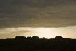 DE, DE-SH, NF, SH, clouds, deutschland, germany, gröde, gröde2008, hallig, hallig gröde, halligen, himmel, holm, kirchwarft, knudswarft, nordfriesland, north frisia, reise, schleswig-holstein, sky, sonne, sonnenaufgang, sun, sunrise, travel, wolken, world