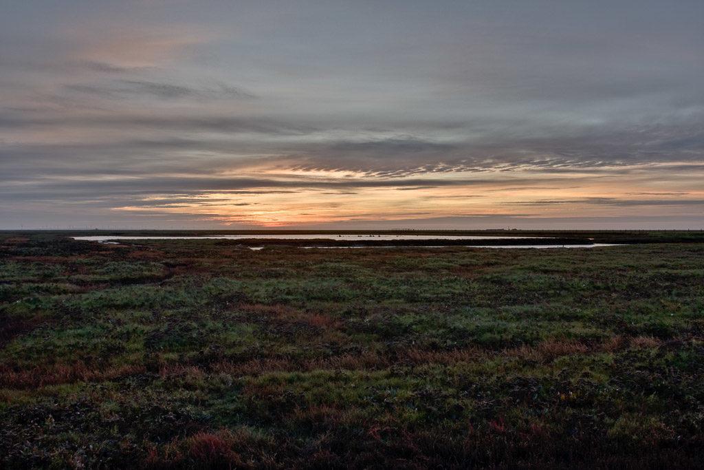 DE, DE-SH, NF, SH, clouds, deutschland, enfuse, fotografie, germany, gröde, gröde2008, hallig, hallig gröde, halligen, himmel, holm, marshes, nordfriesland, north frisia, photography, phototech, pre-hdr, reise, salt marshes, salzwiesen, schleswig-holstein, sky, sonne, sonnenaufgang, sun, sunrise, travel, wolken, world