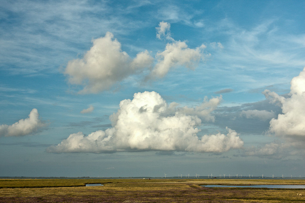 DE, DE-SH, NF, SH, blau, blue, clouds, cloudscape, color, colors, deutschland, farbe, farben, filter, filter-pol, fotografie, germany, groede2009, gröde, hallig, hallig gröde, halligen, himmel, holm, jahreszeit, jahreszeiten, marshes, nordfriesland, north frisia, photography, phototech, reise, salt marshes, salzwiesen, schleswig-holstein, season, seasons, sky, sommer, summer, travel, wolken, wolkenlandschaft, world