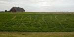 DE, DE-SH, NF, SH, buchstabe, buchstaben, clouds, deich, deutschland, dike, dyke, germany, groede2009, gröde, hallig, hallig gröde, halligen, himmel, holm, jahreszeit, jahreszeiten, kirchwarft, letter, letters, nordfriesland, north frisia, reise, ringdeich, schild, schilder, schleswig-holstein, season, seasons, sign, signs, sky, sommer, summer, travel, wolken, world