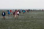 DE, DE-SH, NF, SH, deutschland, germany, groede2009, gröde, hallig, hallig gröde, halligen, hiking, himmel, holm, jahreszeit, jahreszeiten, leute, meer, menschen, mudflat, mudflat hiking, nordfriesland, north frisia, people, reise, schleswig-holstein, sea, seascape, season, seasons, see, sky, sommer, summer, tidal flat, tourist, touristen, tourists, travel, wandern, wasser, water, watt, wattwandern, wattwanderung, world