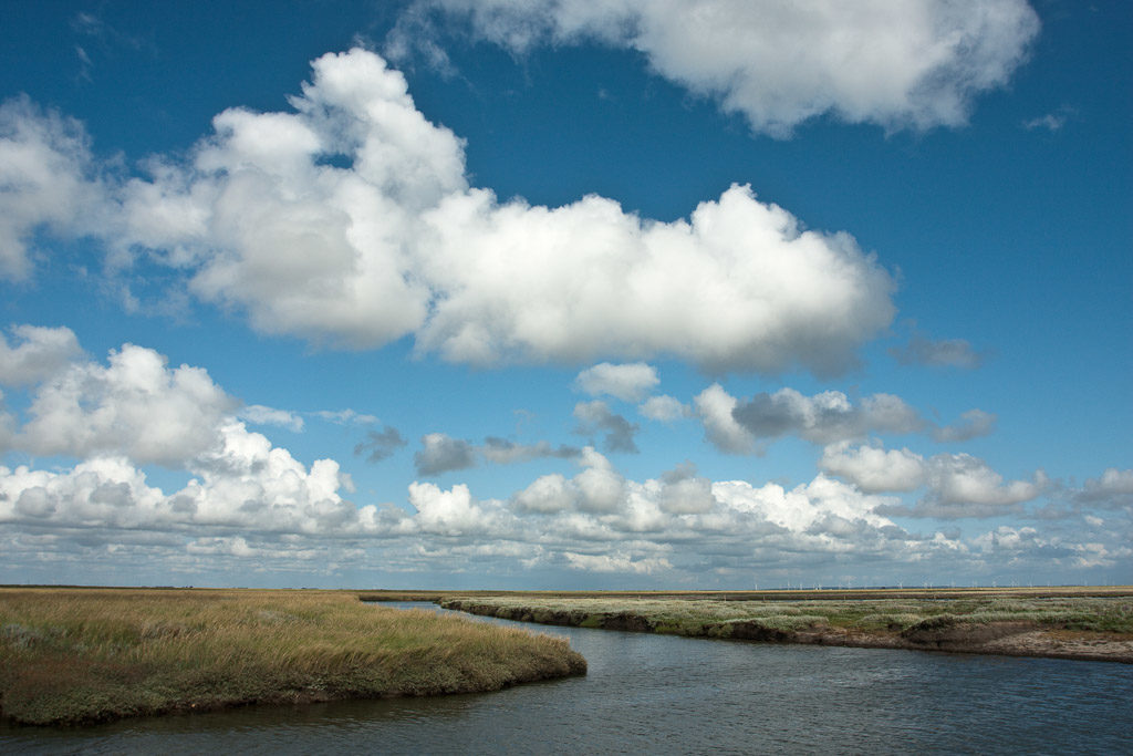 DE, DE-SH, NF, SH, blau, blue, clouds, cloudscape, color, colors, deutschland, farbe, farben, germany, groede2009, gröde, hallig, hallig gröde, halligen, himmel, holm, jahreszeit, jahreszeiten, marshes, nordfriesland, north frisia, reise, salt marshes, salzwiesen, schleswig-holstein, season, seasons, sky, sommer, summer, travel, wasser, water, wolken, wolkenlandschaft, world