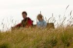 DE, DE-SH, NF, SH, büter, clouds, deutschland, familie, family, germany, gras, groede2009, gröde, hallig, hallig gröde, halligen, himmel, holm, jahreszeit, jahreszeiten, jenny, jenny büter, leute, marshes, menschen, nordfriesland, north frisia, people, pflanzen, plants, reise, salt marshes, salzwiesen, schleswig-holstein, season, seasons, sky, sommer, summer, susanne, susanne büter, travel, wolken, world