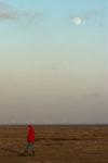 DE, DE-SH, NF, SH, abend, astrofotografie, astronomie, astronomy, astrophotography, büter, deutschland, evening, familie, family, frühling, germany, groede2010, gröde, hallig, hallig gröde, halligen, holm, jahreszeit, jahreszeiten, leute, marshes, menschen, mond, moon, nordfriesland, north frisia, people, reise, salt marshes, salzwiesen, schleswig-holstein, season, seasons, solar system, sonnensystem, spring, susanne, susanne büter, travel, world