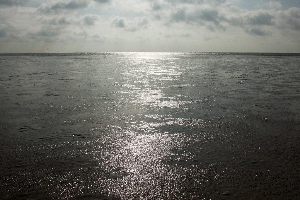 DE, DE-SH, NF, SH, backlight, deutschland, frühling, gegenlicht, germany, groede2010, gröde, hallig, hallig gröde, halligen, holm, horizon, horizont, jahreszeit, jahreszeiten, licht, light, meer, mudflat, nordfriesland, north frisia, reise, schleswig-holstein, sea, seascape, season, seasons, see, spring, tidal flat, travel, wasser, water, watt, world