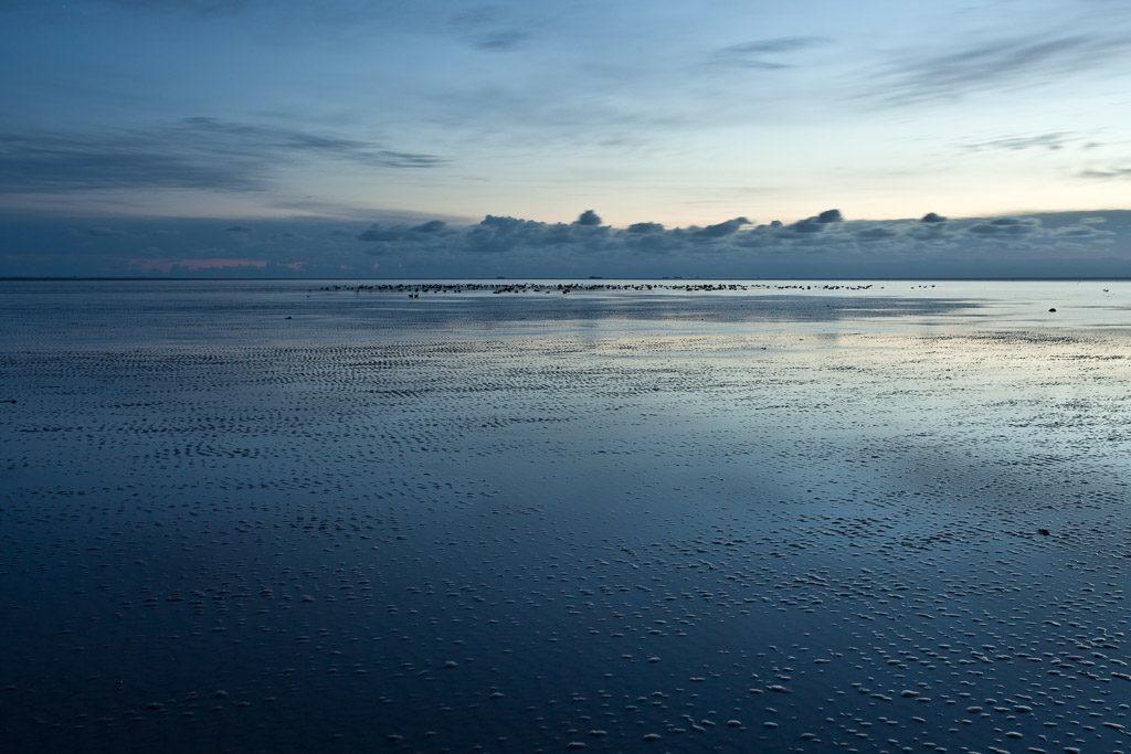DE, DE-SH, NF, SH, deutschland, germany, groede2012, gröde, hallig, hallig gröde, halligen, holm, nordfriesland, north frisia, reise, sandbank, schleswig-holstein, travel, world