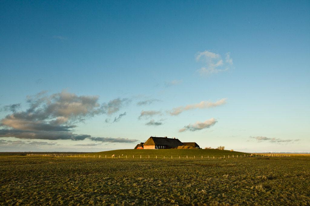 DE, DE-SH, NF, SH, deutschland, germany, groede2012, gröde, hallig, hallig gröde, halligen, holm, nordfriesland, north frisia, reise, schleswig-holstein, travel, world