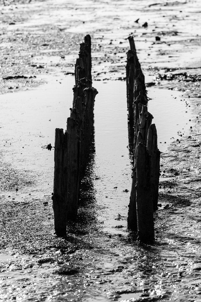appelland, b&w, black and white, bw, fotografie, groede2014, gröde, hallig, hallig gröde, halligen, holm, photography, reise, schwarzweiß, sw, travel