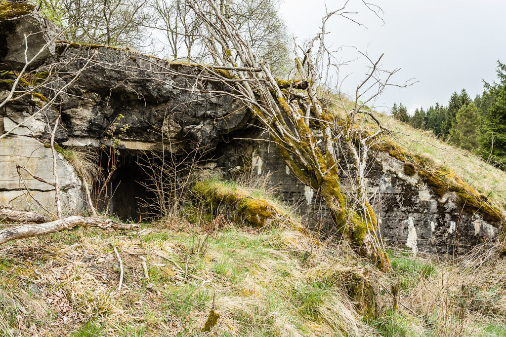 DE, buildings, bunker, deutschland, eifel, gebäude, germany, monschauer heckenland, naturschutzgebiet Perlenbach-Fuhrtsbachtal, nordeifel, perlenbach-fuhrtsbachtal, world