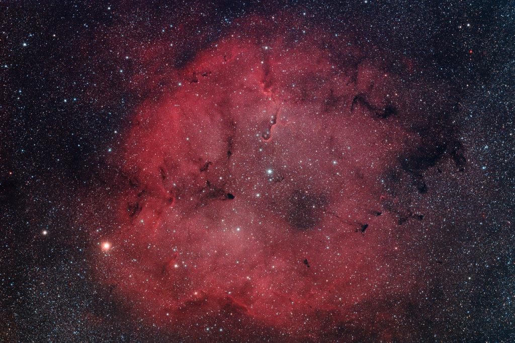 astrofotografie, astronomie, astronomy, astrophotography, cepheus, elefantenrüsselnebel, elephants trunk nebula, emission nebula, emissionsnebel, ic, ic1396, ic1396a, kepheus, star, star cluster, stars, stern, sterne, sternhaufen