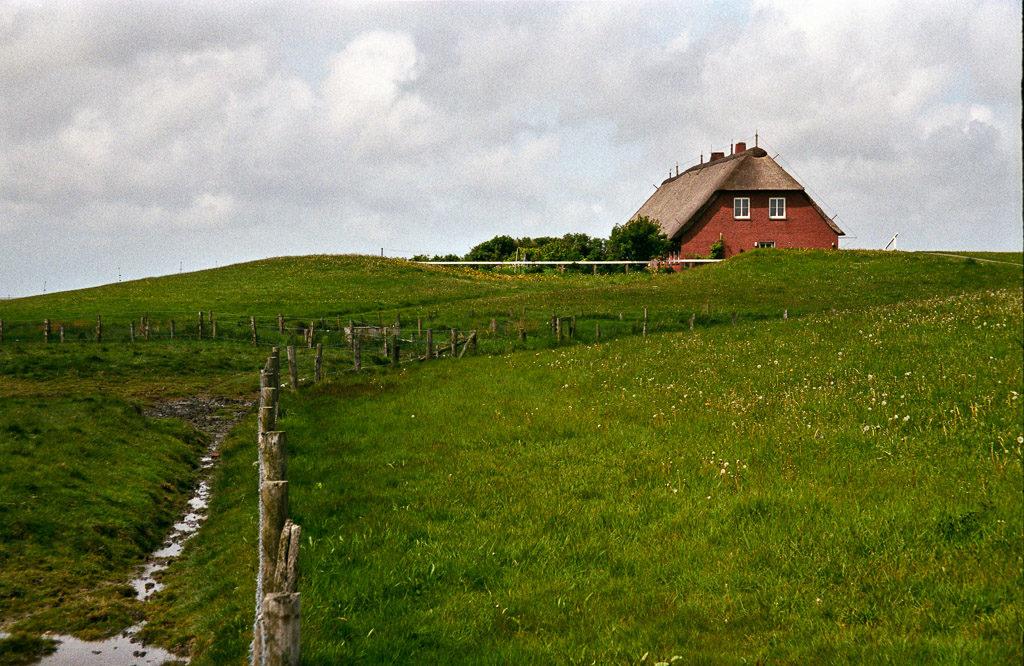 DE, DE-SH, NF, SH, buildings, color, colors, deich, deutschland, dike, dyke, farbe, farben, gebäude, germany, green, gröde, grün, hallig, hallig gröde, halligen, haus, holm, house, houses, häuser, kirchwarft, knudswarft, nordfriesland, north frisia, reise, ringdeich, schleswig-holstein, travel, world