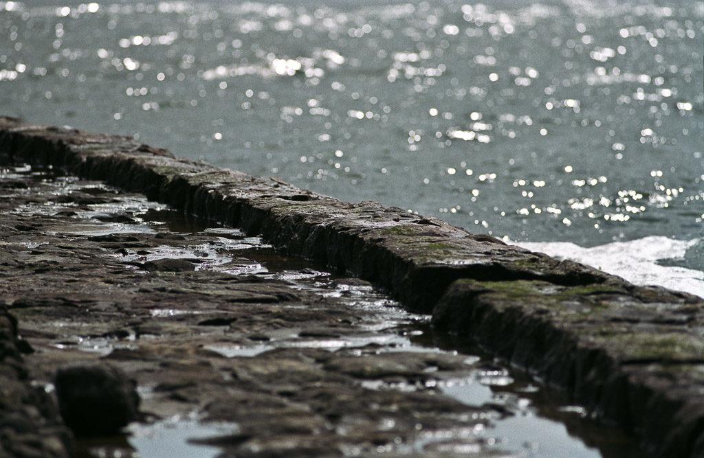 DE, DE-SH, NF, SH, deutschland, embankment, germany, gröde, hallig, hallig gröde, halligen, holm, meer, nordfriesland, north frisia, reise, schleswig-holstein, sea, seascape, see, steinkante, stone edge, travel, wasser, water, world
