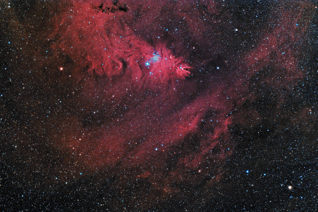 astrofotografie, astronomie, astronomy, astrophotography, christmas tree cluster, cone nebula, emission nebula, emissionsnebel, hubbles variable nebula, monoceros, ngc, ngc2259, ngc2261, ngc2264, open cluster, star, star cluster, stars, stern, sterne, sternhaufen