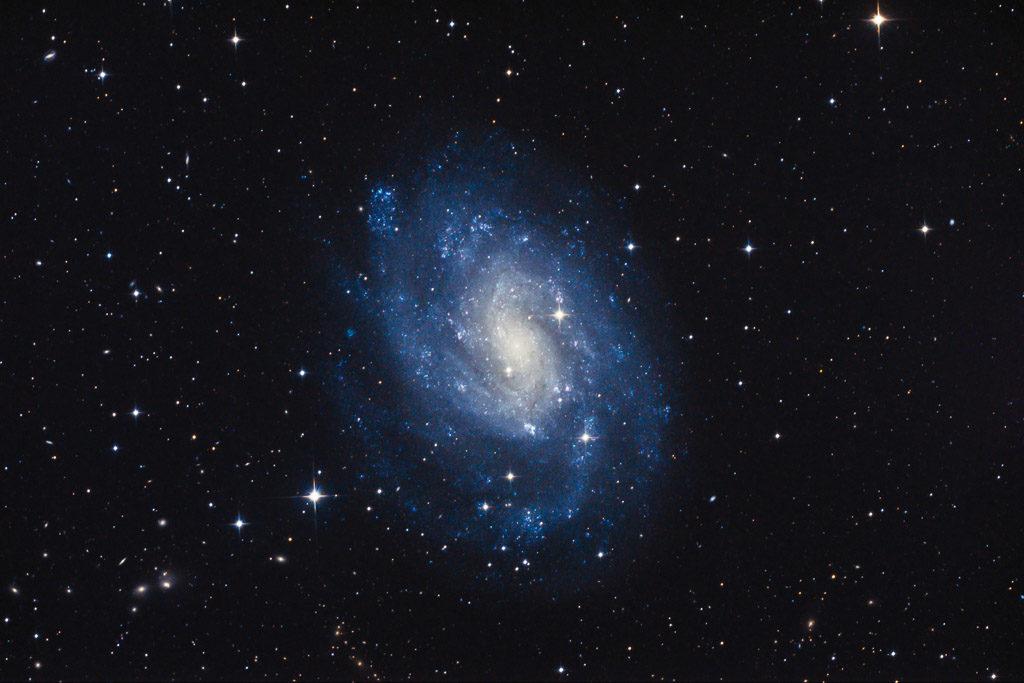 astrofotografie, astronomie, astronomy, astrophotography, bildhauer, galaxy, ngc, ngc300, sculptor, spiral galaxy, star, stars, stern, sterne