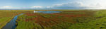 DE, DE-SH, NF, SH, color, colors, deutschland, farbe, farben, fotografie, germany, glasswort, green, gröde, gröde2008, grün, hallig, hallig gröde, halligen, holm, marshes, nordfriesland, north frisia, panorama, panoramastudio, pflanzen, photography, phototech, plants, queller, red, reise, rot, salt marshes, salzwiesen, schleswig-holstein, travel, world