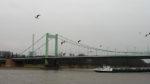 bridge, bridges, brücke, brücken, city, cityscape, cologne, köln, mülheim, stadt, stadtbezirk 9 - mülheim, stadtbild, stadtlandschaft, städtisch, urban, vhs, workshop