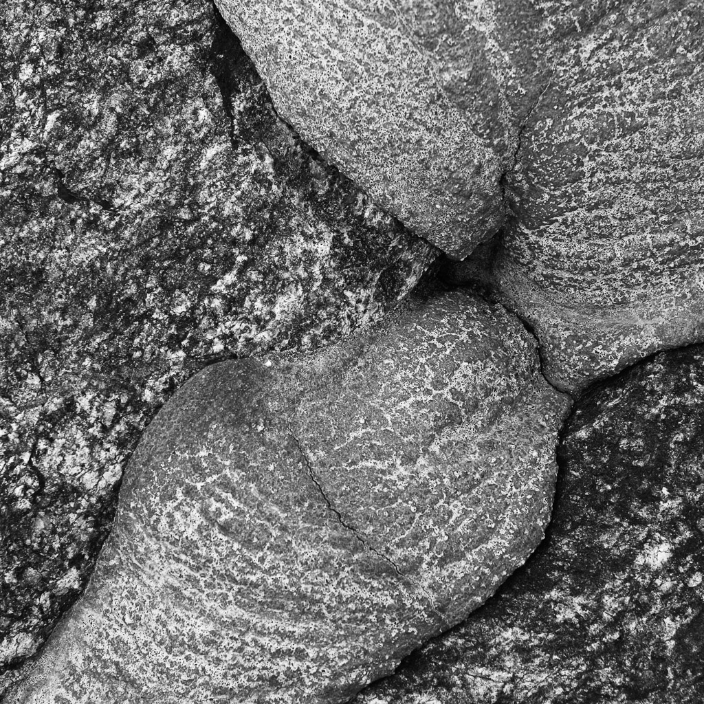 DE, DE-SH, NF, SH, abstract, abstrakt, b&w, black and white, bw, deutschland, embankment, fotografie, germany, gröde, hallig, hallig gröde, halligen, holm, jahreszeit, jahreszeiten, landscape, landschaft, natur, nature, nordfriesland, nordsee, north frisia, north sea, photography, reise, rural, schleswig-holstein, schwarzweiß, season, seasons, sommer, steinkante, stone edge, summer, sw, travel, wadden sea, wattenmeer, world
