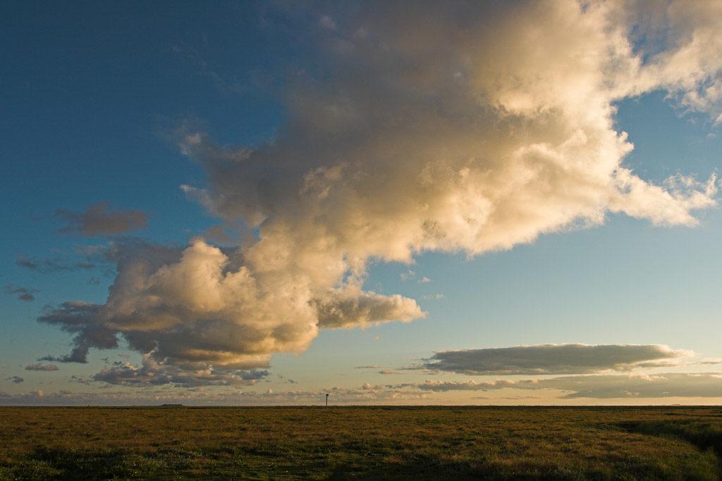 DE, DE-SH, NF, SH, clouds, deutschland, germany, gröde, hallig, hallig gröde, halligen, himmel, holm, jahreszeit, jahreszeiten, landscape, landschaft, marshes, natur, nature, nordfriesland, nordsee, north frisia, north sea, reise, rural, salt marshes, salzwiesen, schleswig-holstein, season, seasons, sky, sommer, sonne, sonnenaufgang, summer, sun, sunrise, travel, wadden sea, wattenmeer, wolken, world