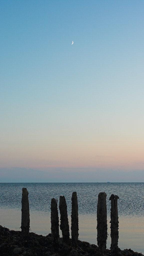 DE, DE-SH, NF, SH, deutschland, ebbe, embankment, germany, gröde, hallig, hallig gröde, halligen, holm, jahreszeit, jahreszeiten, landscape, landschaft, low tide, meer, natur, nature, niedrigwasser, nordfriesland, nordsee, north frisia, north sea, reise, rural, schleswig-holstein, sea, seascape, season, seasons, see, sommer, steinkante, stone edge, summer, travel, wadden sea, wasser, water, wattenmeer, world