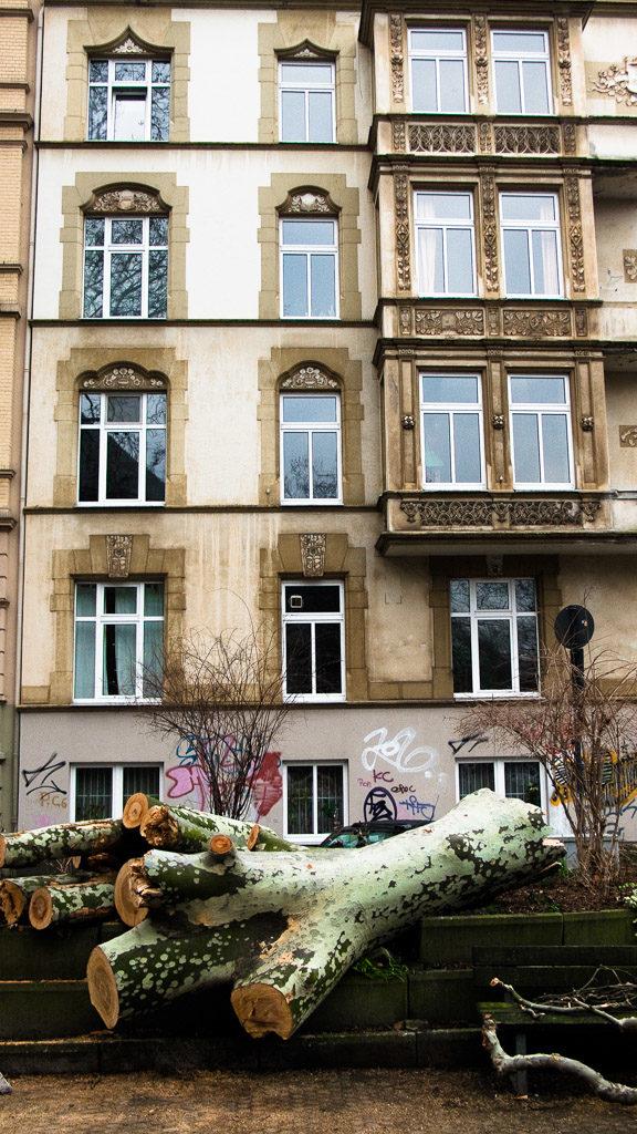 2007, DE, DE-NW, K, NRW, aftermath, altstadt, brüsseler platz, buildings, city, cityscape, cologne, deutschland, ereignisse, events, gebäude, germany, haus, house, houses, häuser, innenstadt, inner city, kyrill, köln, kölner plätze, nordrhein-westfalen, northrhine-westfalia, old town, places, stadt, stadtbezirk 1 - innenstadt, stadtbild, stadtlandschaft, storm, städtisch, urban, vhs, workshop, world
