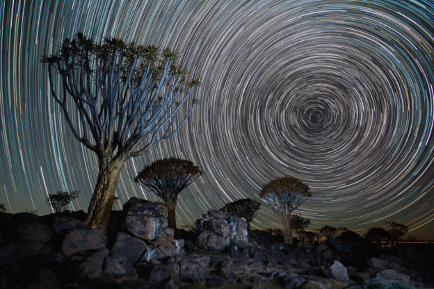NA, astrofotografie, astronomie, astronomy, astrophotography, karas, keetmanshoop, kokerboom woud, köcherbaumwald, namibia, quiver tree forest, star, star trail, stars, stern, sterne, world