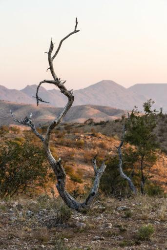 NA, berge, hakos, hakos guest farm, khomas, landscape, landschaft, mountains, namibia, world