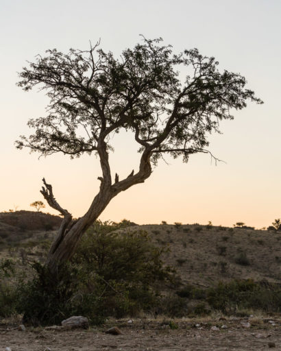 NA, hakos, hakos guest farm, khomas, landscape, landschaft, namibia, world