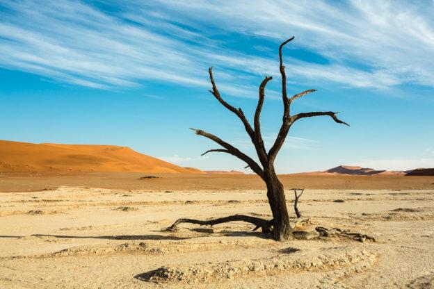 NA, deadvlei, dune, dunes, düne, dünen, hardap, landscape, landschaft, namibia, sonne, sonnenaufgang, sossusvlei, sun, sunrise, world