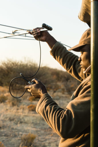 NA, erindi, erindi private game reserve, erongo, leute, menschen, namibia, people, world