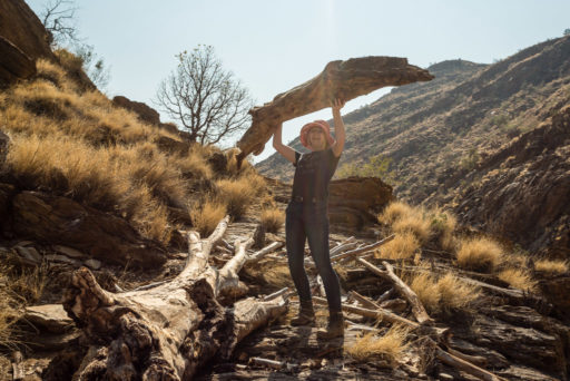 Jennifer Büter, NA, aloe dichotoma, baum, bäume, hakos, hakos guest farm, hakosberge, khomas, kokerboom, köcherbaum, köcherbaumwald, namibia, pflanzen, plants, quiver tree, tree, trees, world