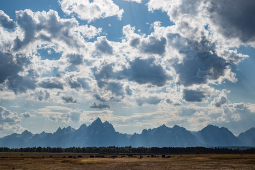 US, US-WY, USA, WY, elk ranch flats turnout, grand teton, grand teton national park, united states, united states of america, vereinigte staaten, world, wyoming