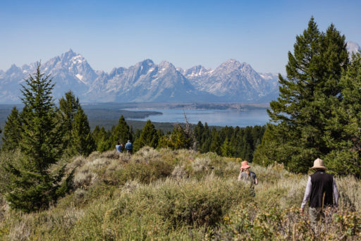 US, US-WY, USA, WY, grand teton, grand teton national park, united states, united states of america, vereinigte staaten, world, wyoming