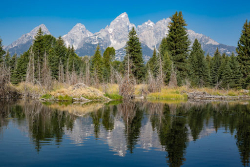 US, US-WY, USA, WY, grand teton, grand teton national park, snake river, united states, united states of america, vereinigte staaten, world, wyoming