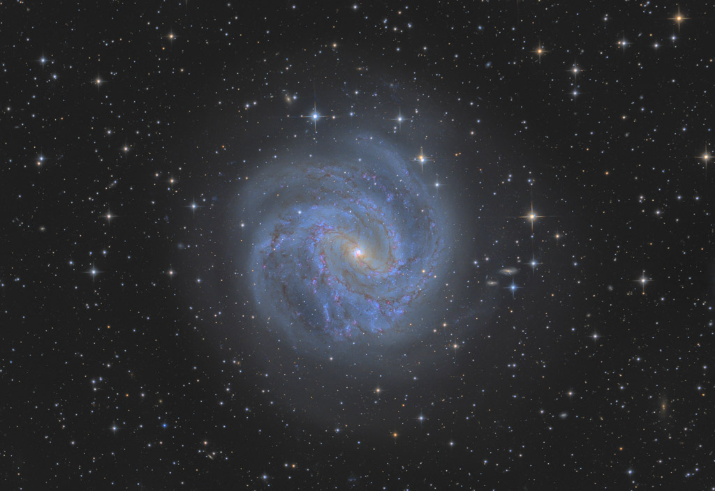 astrofotografie, astronomie, astronomy, astrophotography, galaxy, hydra, m83, messier, ngc, ngc5236, southern pinwheel galaxy, spiral galaxy, star, stars, stern, sterne, südliche feuerradgalaxie, wasserschlange
