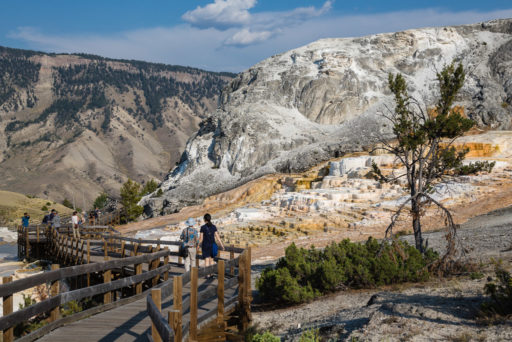 US, US-WY, USA, WY, mammoth hot springs, mound and jupiter terraces, united states, united states of america, vereinigte staaten, world, wyoming, yellowstone, yellowstone national park
