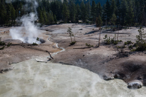 US, US-WY, USA, WY, mud vulcano area, turbulent pool, united states, united states of america, vereinigte staaten, world, wyoming, yellowstone, yellowstone national park