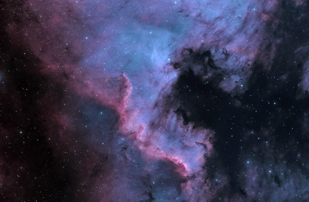 astrofotografie, astronomie, astronomy, astrophotography, bicolor, cygnus, ngc, ngc7000, nordamerikanebel, north america nebula, reflection nebula, schwan