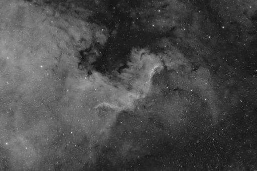astrofotografie, astronomie, astronomy, astrophotography, b&w, black and white, bw, cygnus, emission nebula, emissionsnebel, fotografie, ngc, ngc7000, nordamerikanebel, north america nebula, photography, schwan, schwarzweiß, sw
