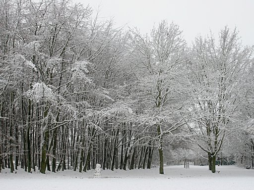 Cologne - Holweide - Snow 1
